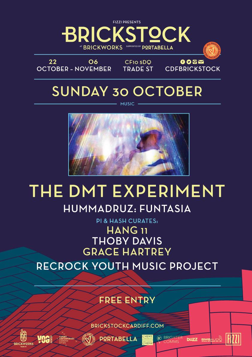 The DMT Experiment